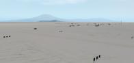 Pegasus Field (NZPG)
